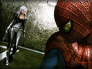 "The Amazing Spider-Man, Felicia Hardy ""Black Cat"""