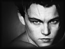 Leonardo DiCaprio, Face, Black & White
