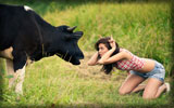 Girl Playing with a Cow