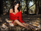 Denise Milani on the Ground, Autumn Leaves