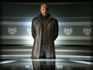 The Avengers: Samuel L. Jackson as Nick Fury