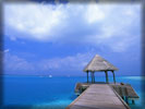 Beach And Sea, Maldives, Hut