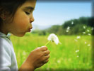 Spring, Kid Blowing a Dandelion