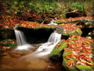 Waterfalls, Autumn Leaves