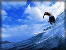 Windsurfing, Waves, Sky, Guy